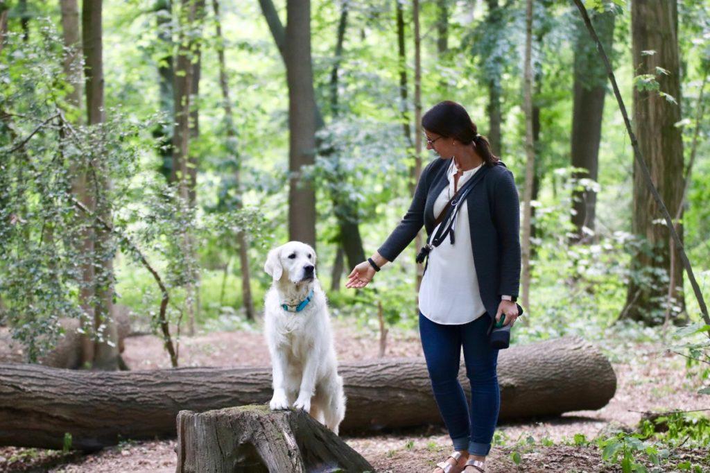 Frau mit Golden Retriever Hund im Wald