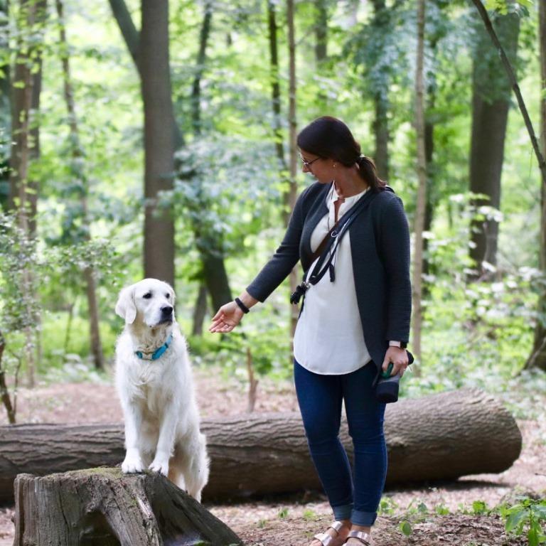 Gemeinsamer Spaziergang im Wald